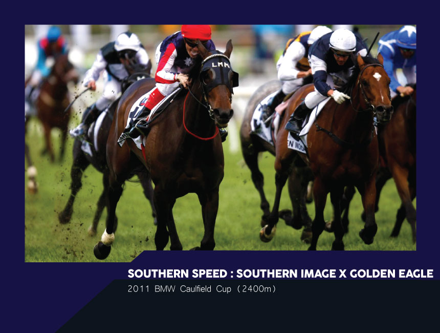 SouthernSpeed.jpg