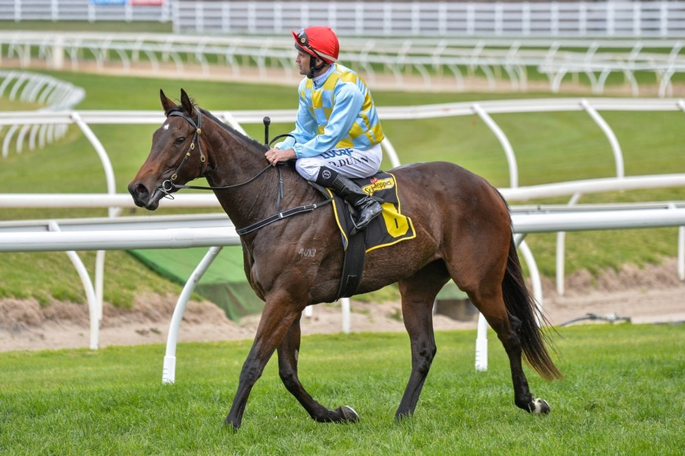 Booker_Thousand-Guineas-Prelude_Racing-Photos_resized.jpg