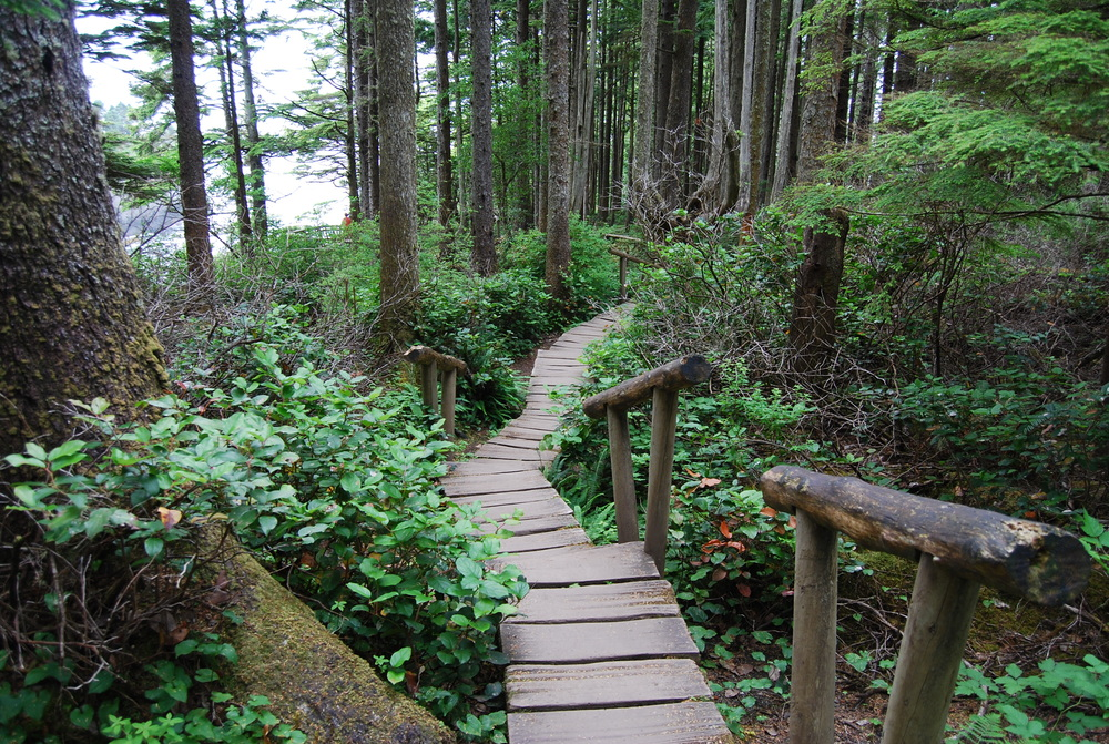 Cape Flattery Stairs.jpg