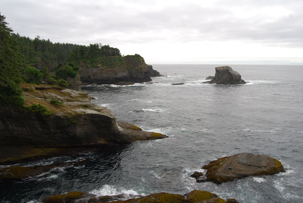 Cape Flattery Trail.jpg