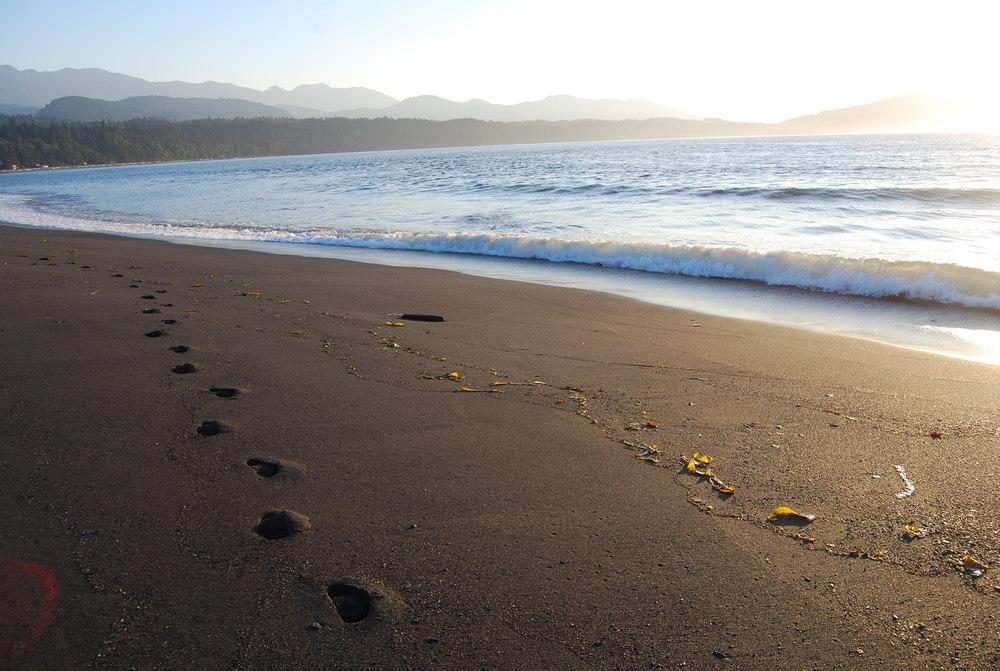 Elwha Beach.jpg