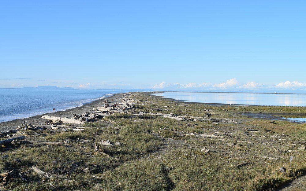Dungeness Spit Hiking.jpg