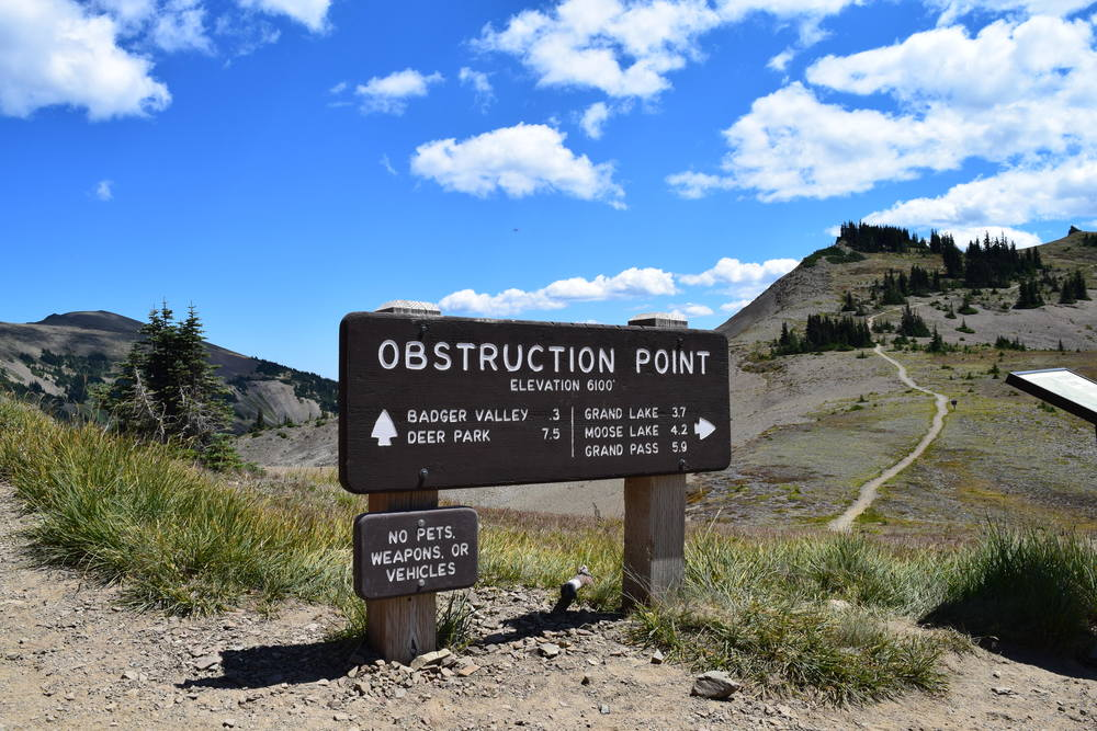 Obstruction Point Trailhead.jpg
