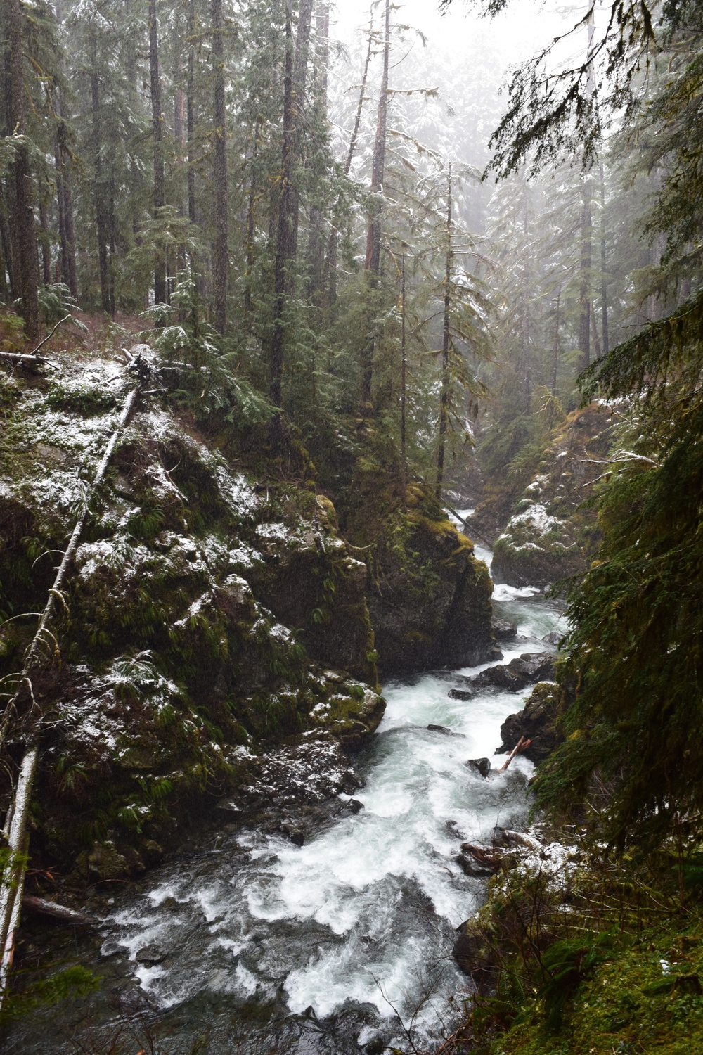 Sol Duc River Valley.jpg