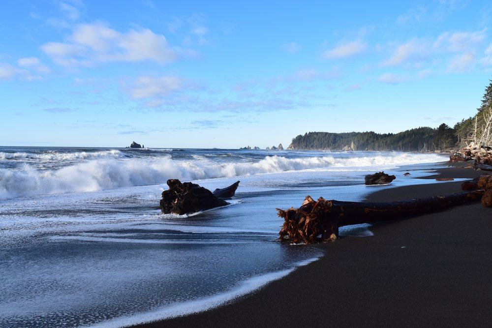 Picturesque Coastline.jpg