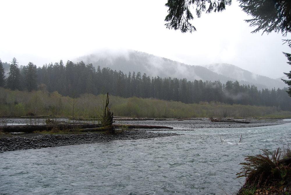 Hoh River.jpg