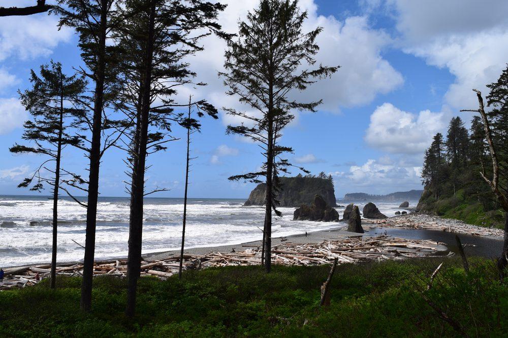 Ruby Beach.jpg