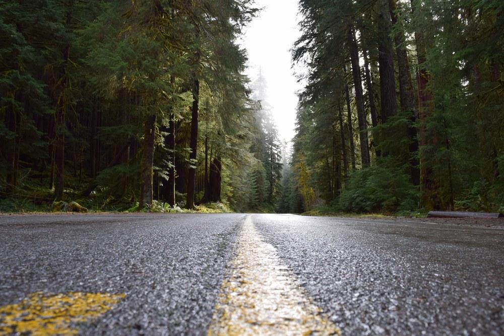 Road to Adventure.jpg