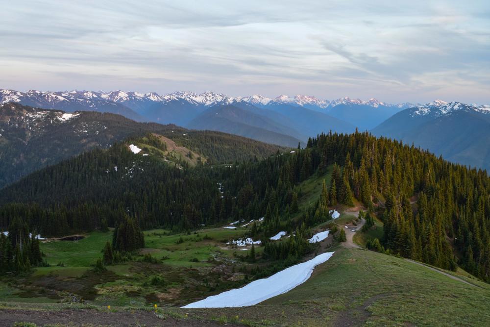 Hurricane Ridge Tour: View at the summit