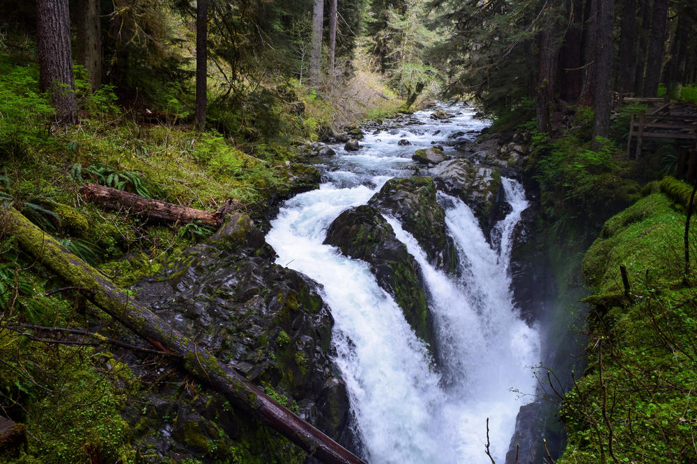 Sol Duc Falls Tour: The iconic, powerful falls