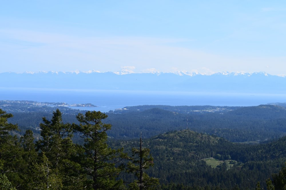 Hiking Views from Victoria.jpg