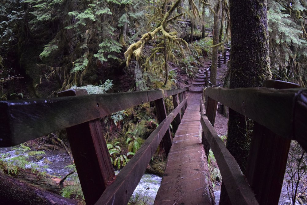 Crossing a rustic log bridge to Marymere