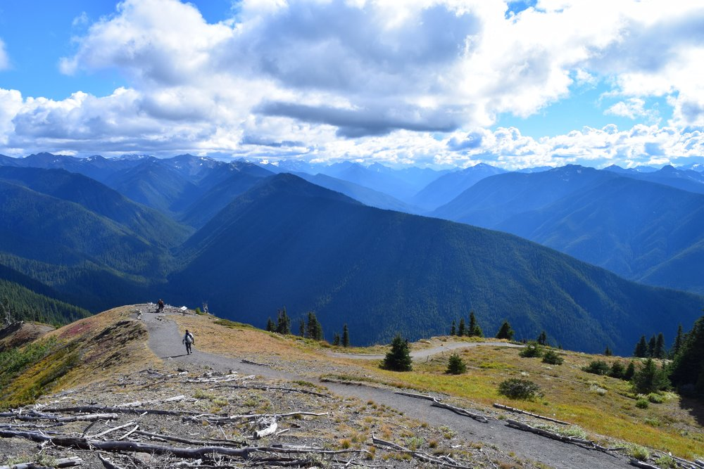 Hiking at Hurricane Ridge.jpg