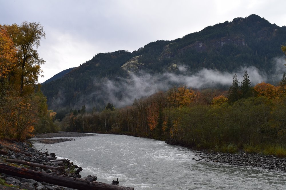 Free flowing Elwha River