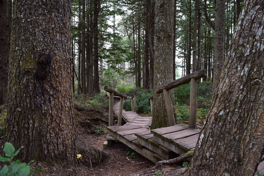 Rustic Boardwalk Trails