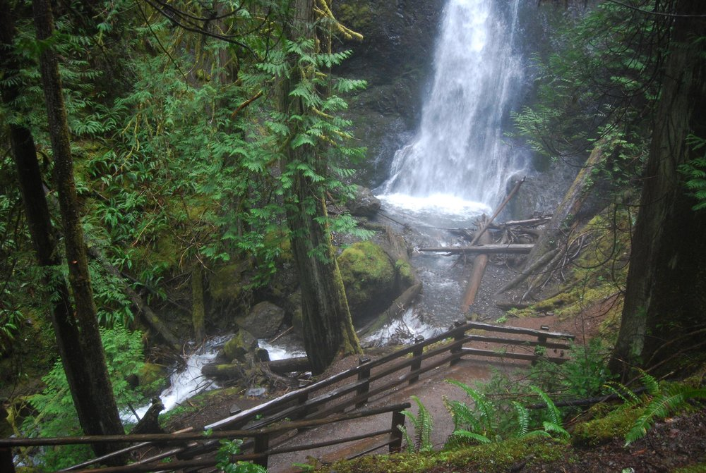 Nature stairs to a Marymere Falls Viewpoint