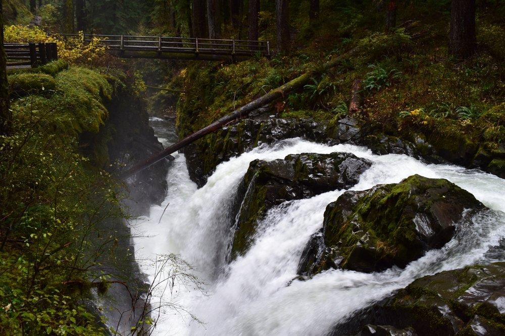 Another beautiful vantage point of Sol Duc Falls