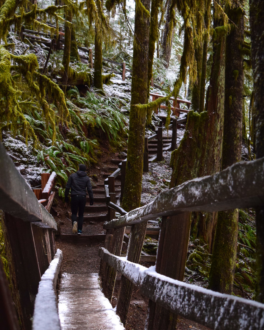 The Nature Stairs to Marymere