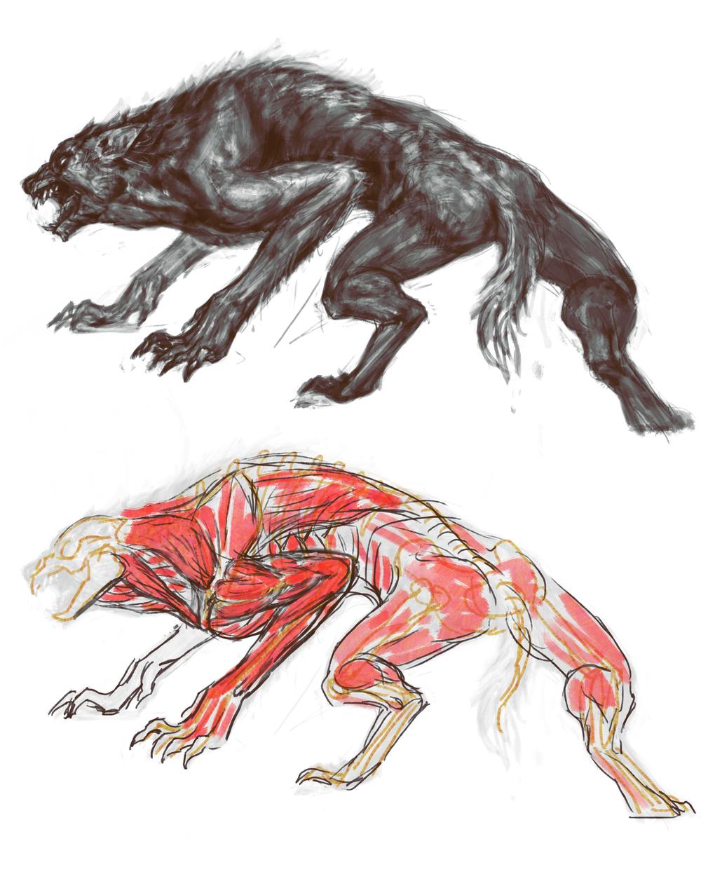werewolf_07a.jpg