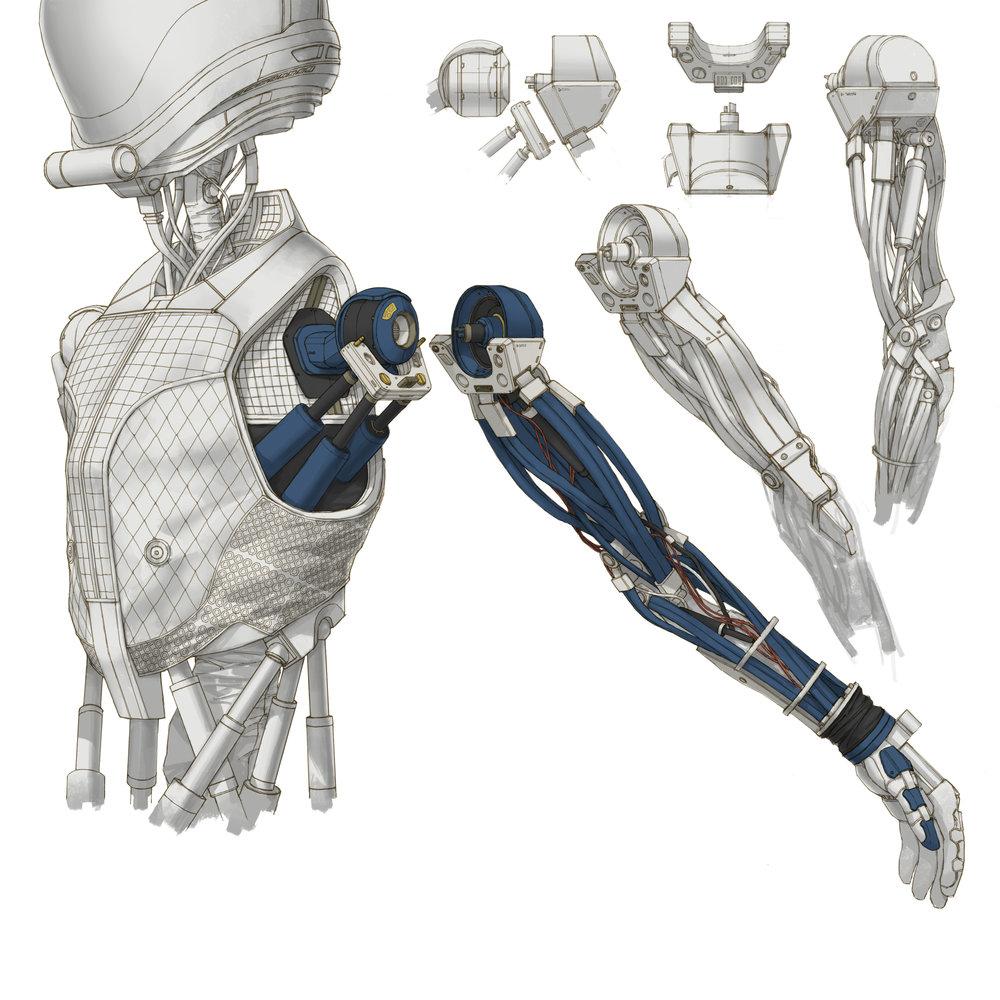 Jack shoulder joints 31.jpg