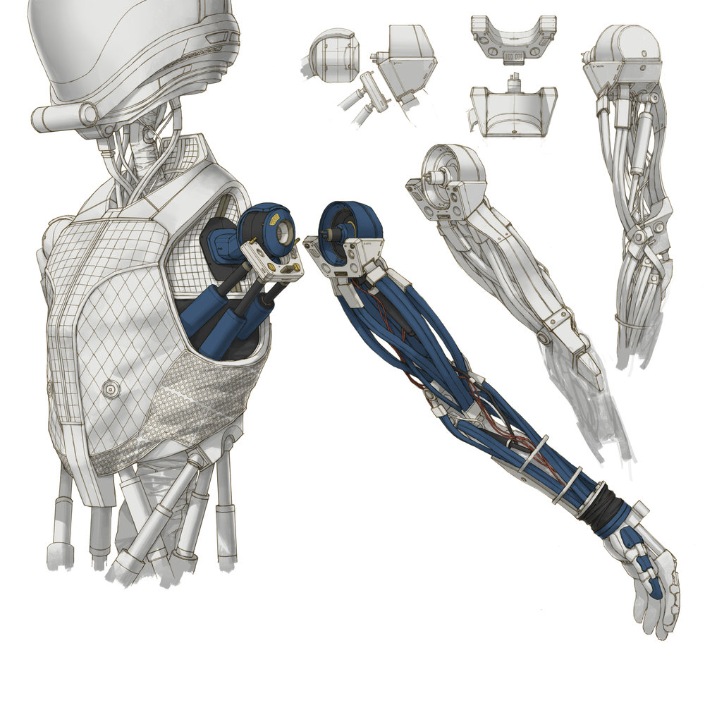 Jack shoulder joints 31.jpg