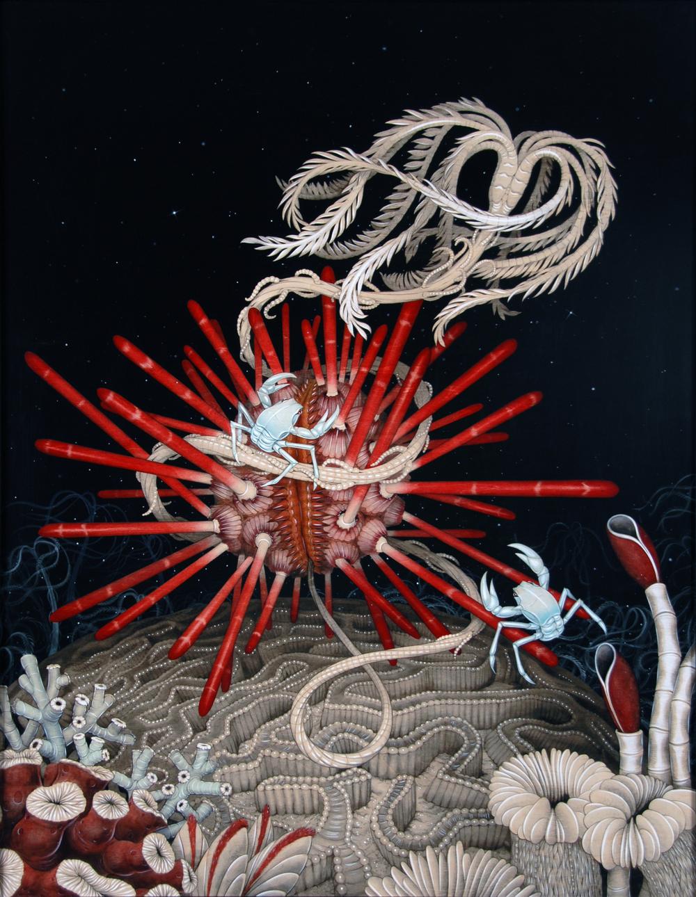 Battle of the Deep