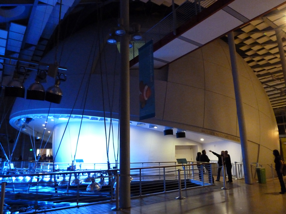 The Morrison Planetarium, California Academy of Sciences. Photo: Paul Grimmer.