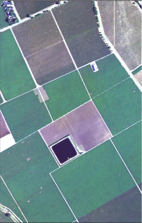 Fade to the same area in 2009 and the oaks give way to agriculture.