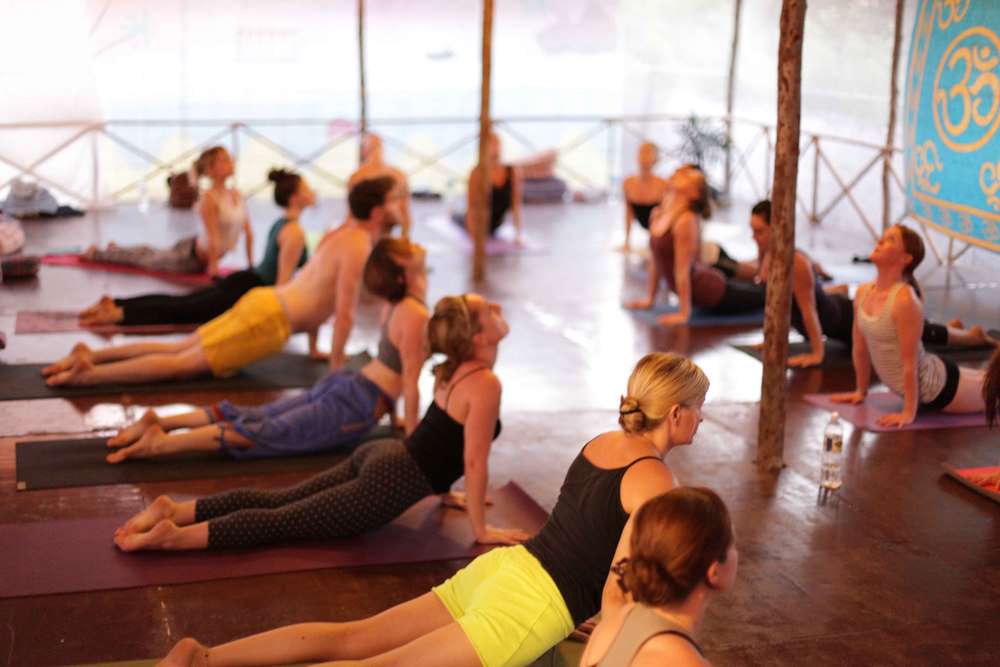 Yoga Business and Extended Training Courses