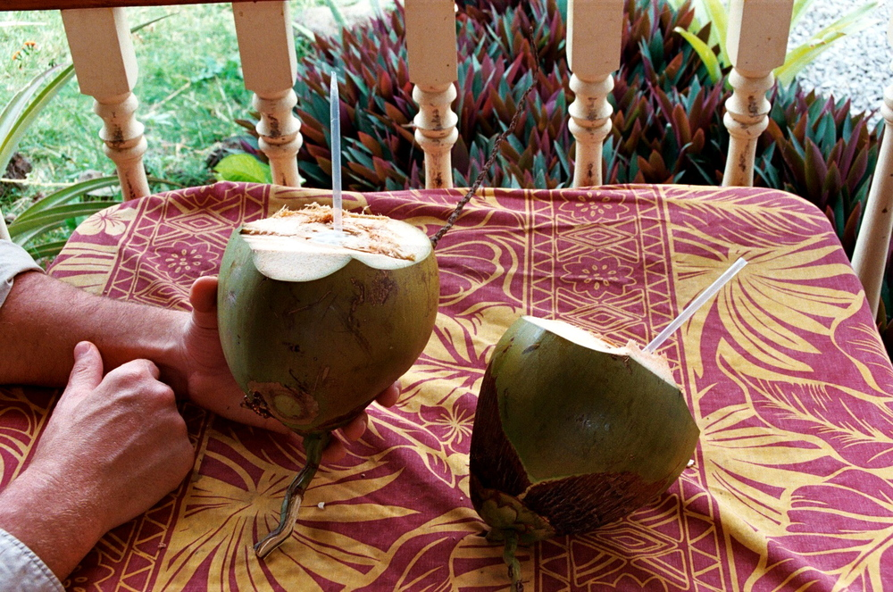 Fresh Coconuts From Our Land!