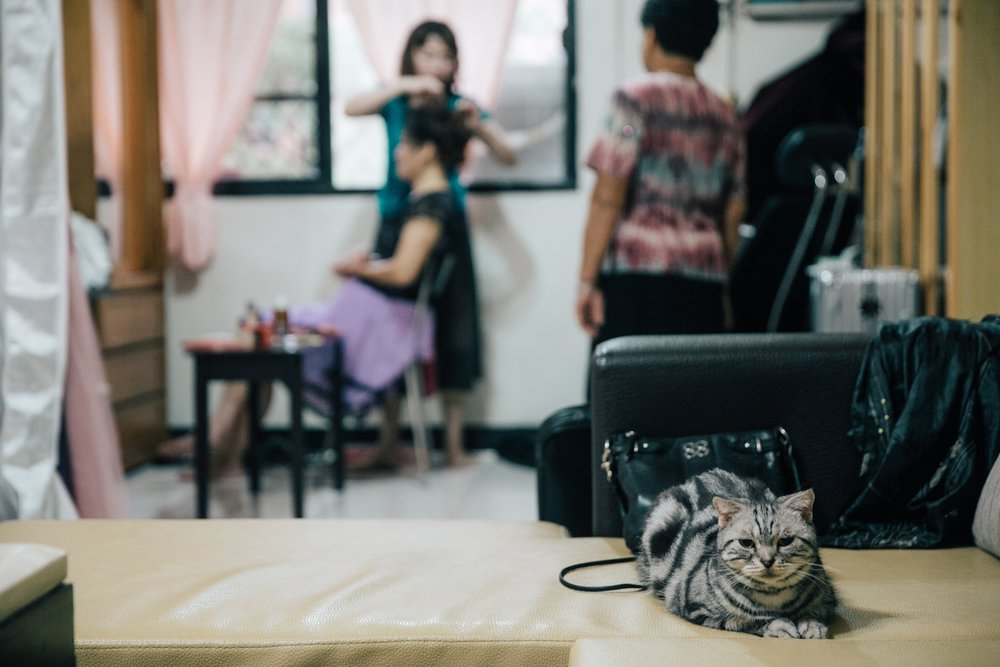 婚禮紀實-karen-ching-wedding-長榮空服-文定迎娶晚宴-新莊典華-dinner-taipei_10.jpg