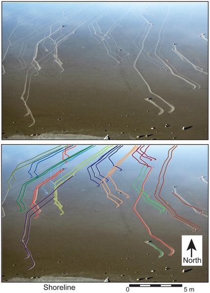 Death Valley sliding rocks mystery solved