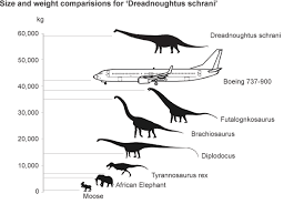 Drednoughtus - The largest dinosaur ever discovered