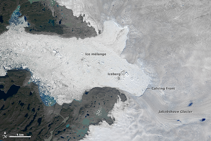 Image of the Jakobshawn Glacier taken by Landsat 8 on July 31, 2015. Image: NASA