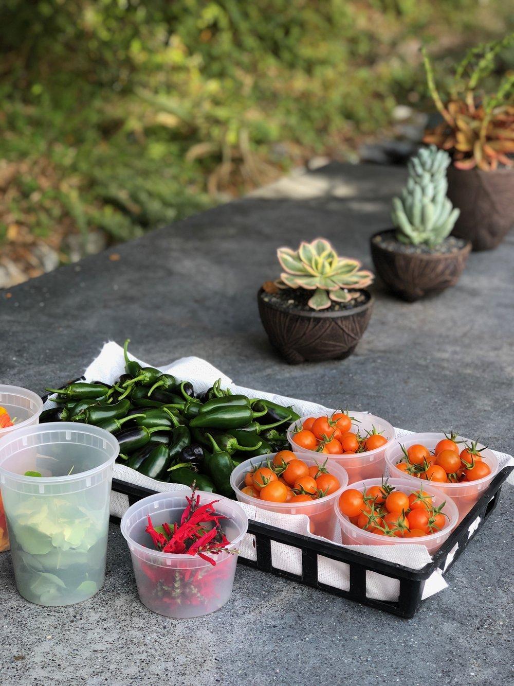 Chefs garden 3631.jpeg