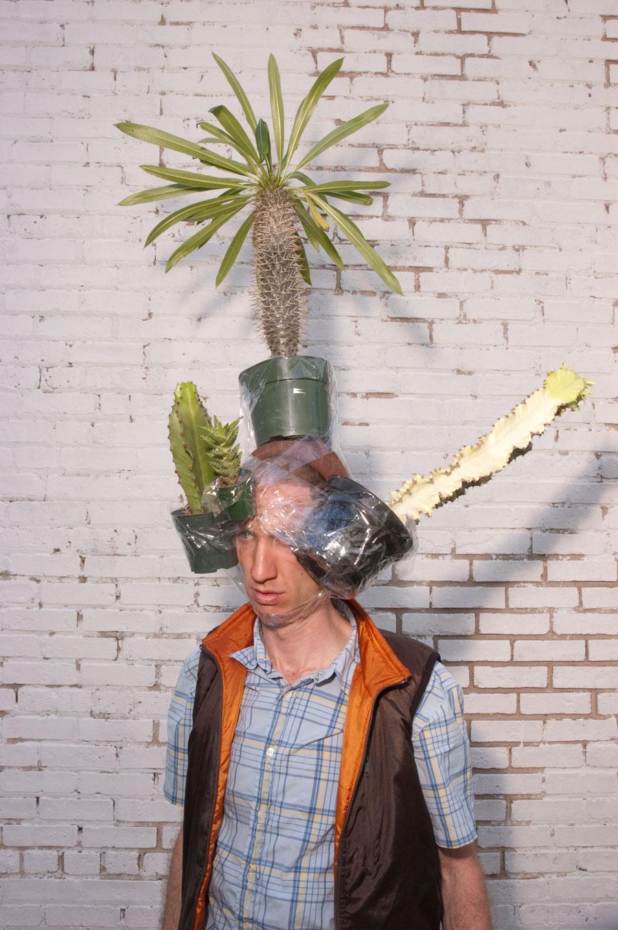 Untitled (cacti) 2007