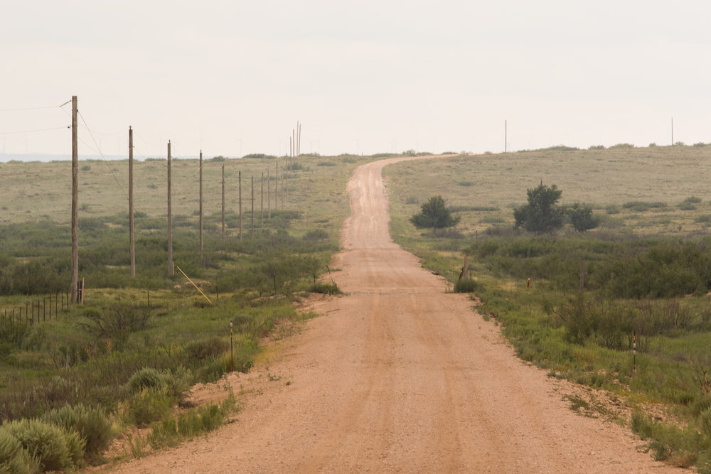 Dirt road with cattle guard in New Mexico