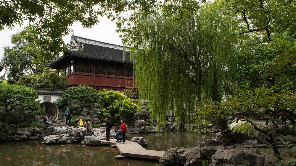Koi pond in Yu Garden