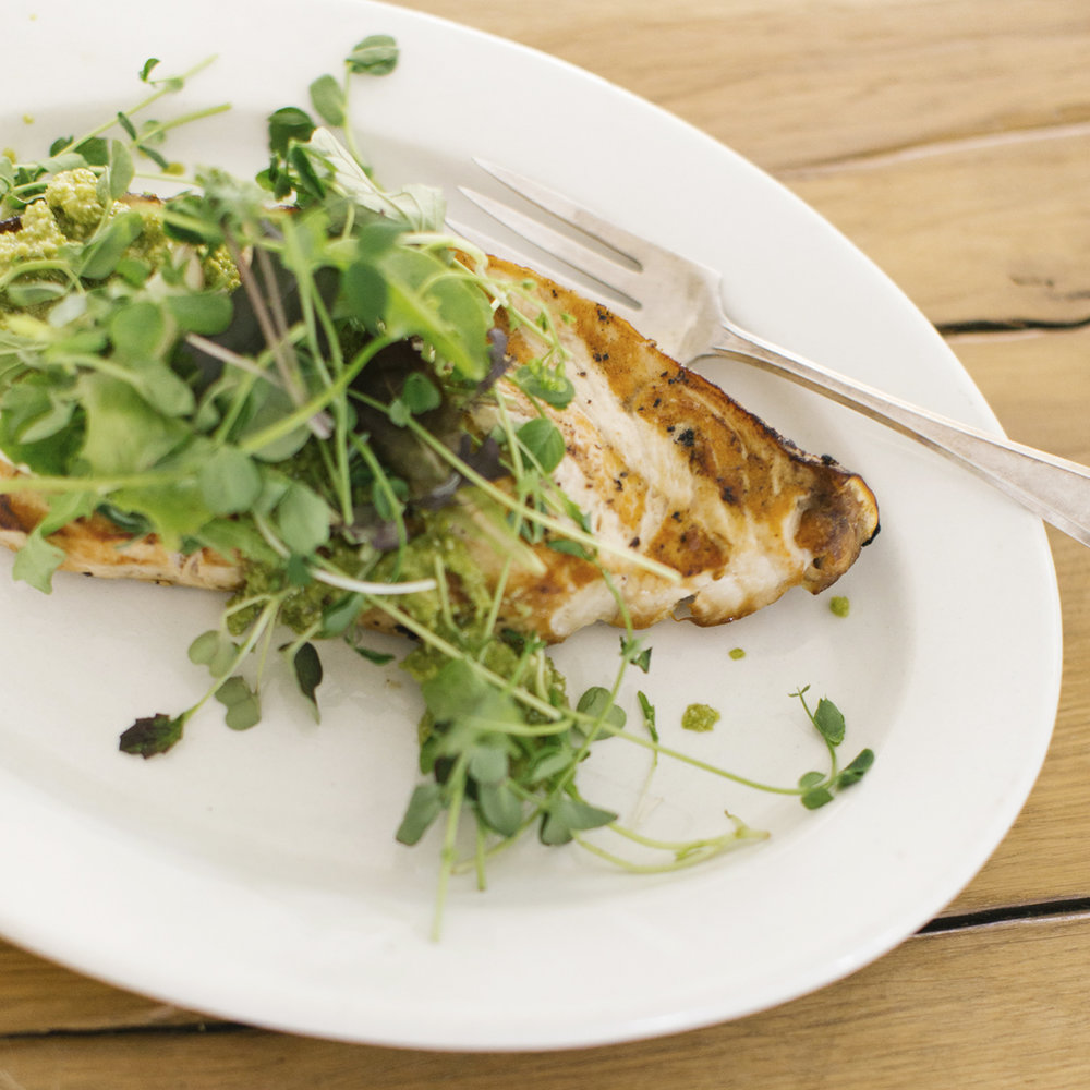 grilled swordfish with pesto + greens