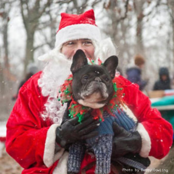 Santa and Frenchie