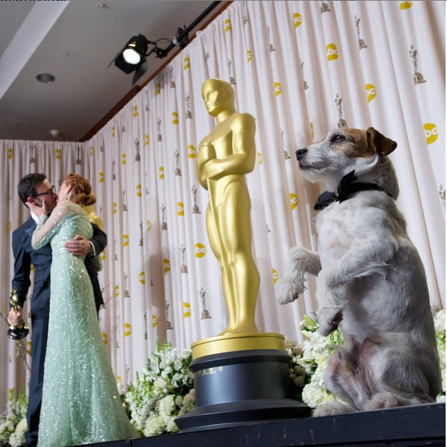 The Artist . The Artist got the Best Picture Oscar, and we think the star is Uggie the Dog. Photo credit: IG @theacademy