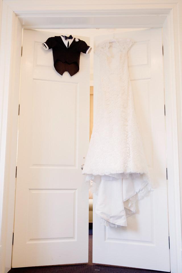 Dog tuxedo compared to wedding dress