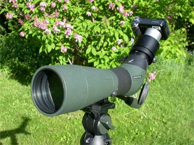 My First Digiscoping Rig