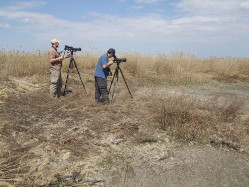 kazakhstan mudflat