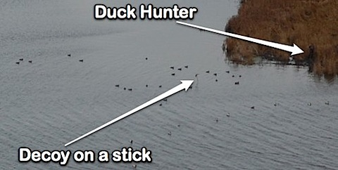 duck hunter-1.jpg