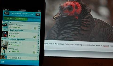birdseye app.jpg