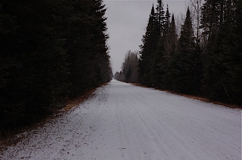 sax zim bog road.jpg
