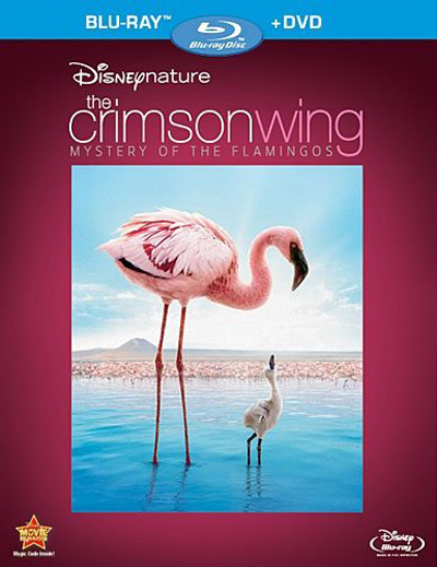 Disneynature-The-Crimson-Wing-1