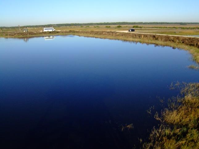 viera-wetlands-784537