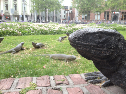 amsterdam lizards